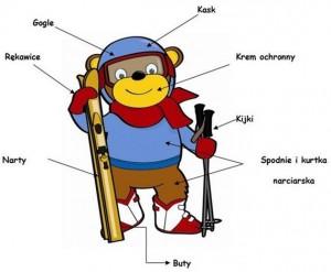 Podstawowe wyposażenie narciarza