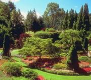 Arboretum Bolestraszyce